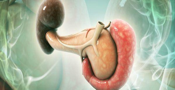 pancreas y diabetes